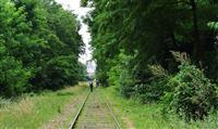 PARIS : Promenade le long de la « petite ceinture »