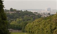 ÎLE DE FRANCE : Un nouveau modèle de gestion des forêts
